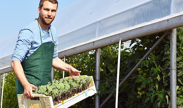 Esti producator de legume,fructe,carne ,oua si artizanat VINDE ONLINE cu noi