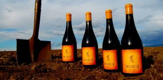 Walla Walla Wineries Palencia Wine Company