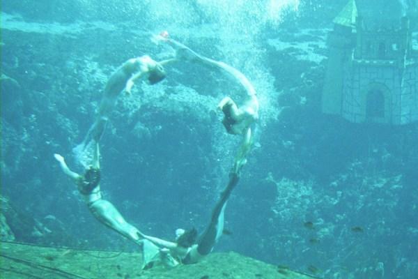 Beautiful Real Mermaids Swimming