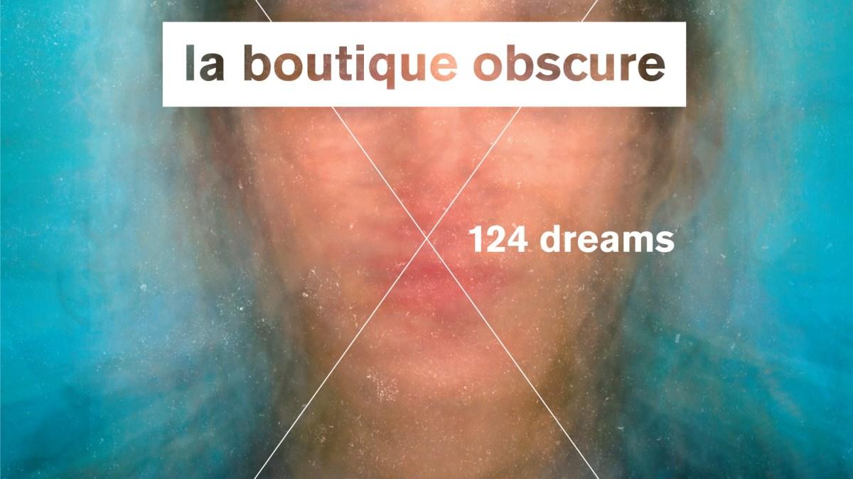 Review: La Boutique Obscure by Georges Perec