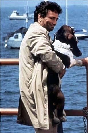 columbo dog 2
