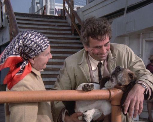 Columbo Try & Catch Me Dog