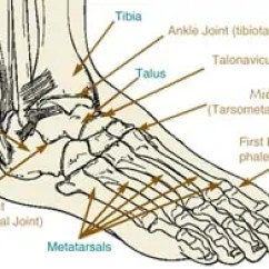 Joints Of The Foot Diagram 2001 Nissan Sentra Car Stereo Radio Wiring Columbus Podiatry Surgery