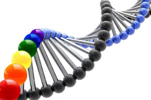 Homosexual gene research