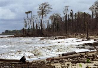 Erosion du littoral guyanais. C.Proisy. IRD-GDR LiGA