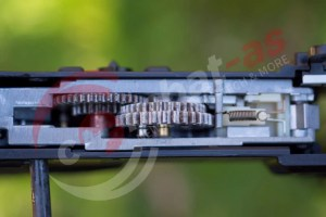 Begadi-ICS-Transform-9.jpg