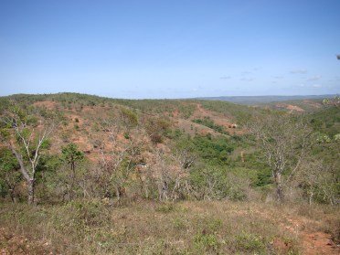 exposed soil in the landscape