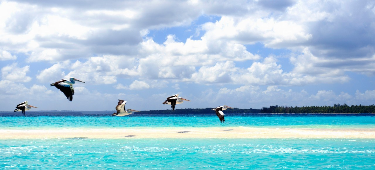 Moluccas islands tours in Indonesia