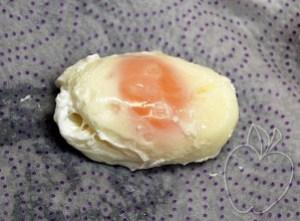Huevos en gelée (14)