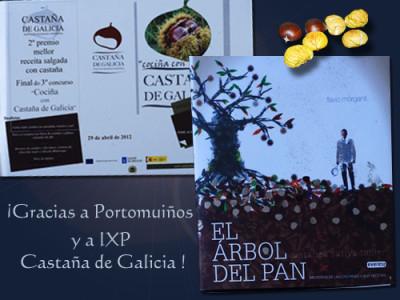 Castana-de-galicia.jpg