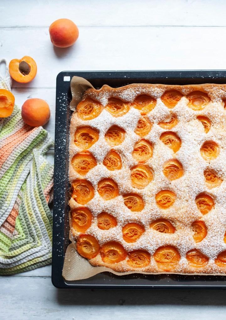 Blechkuchen mit frischen Marillen und Staubzucker