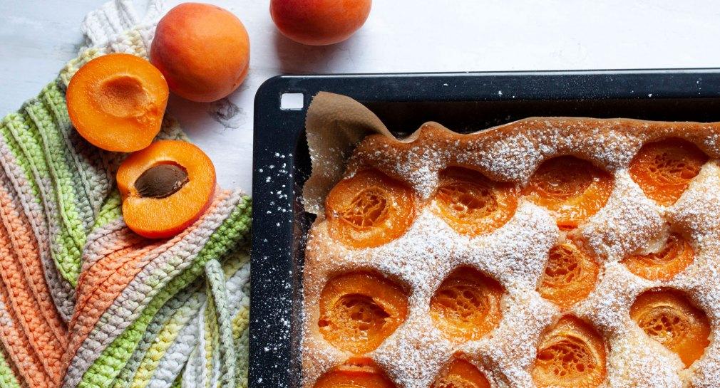Marillenkuchen vom Blech mit Staubzucker