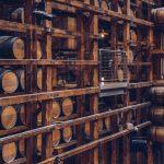 investire nel vino