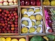 frutas.articulo
