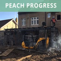 peach-progress