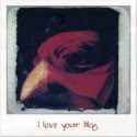 love_blog125x125