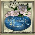 nishasfriendshipaward1-from-coolingstar1