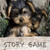 StoryGame