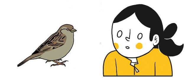 """נעה כ""""ץ (קומיקס ציפורים) – ראיון ר-ציני"""