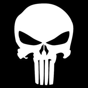 Netflix Original The Punisher
