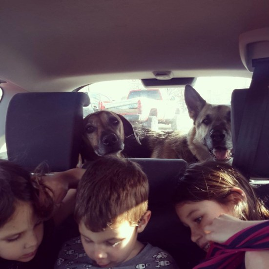 Here we all are in the car... (before Rudi)