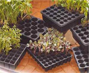 Comercializadora hort cola insumos para invernadero for Insumos para viveros