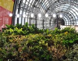 Insumos para invernadero comercializadora hort cola for Jardines verticales introduccion