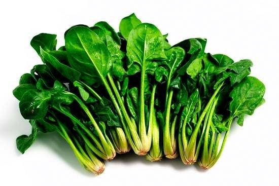 Cómo Sembrar Espinacas En El Huerto || Cultivos. Descubre sus beneficios y propiedades nutritivas