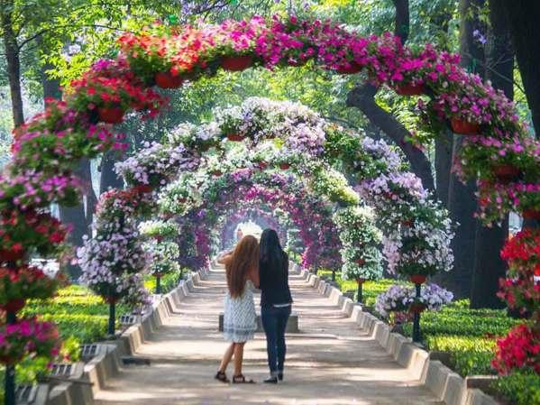 Festival de flores y jardines 2018 Del18 al 22 de abril en Polanco /20 al 22 de abril en el Jardín Botánico. CDMX