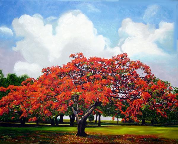 10 Árboles coloridos mas bellos en el mundo