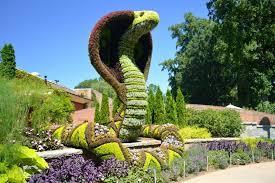 Maravillas de la jardinería. El arte de la poda ornamental