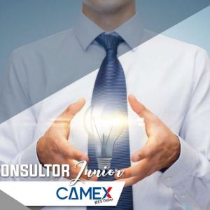 Consultor Junior