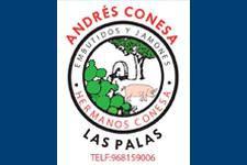 Andres Conesa Navarro