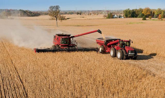 AGRODÓLARES. Pese a la cosecha récord que se viene registrando en 2014, la baja cotización de la soja fue determinante en la balanza comercial.