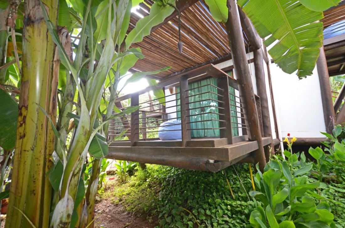 Teju-Açu-horta-fernando de noronha- comerdomirviajar.com (11)