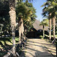 La Cabaña Murcia 2019, última experiencia dos estrellas Michelín