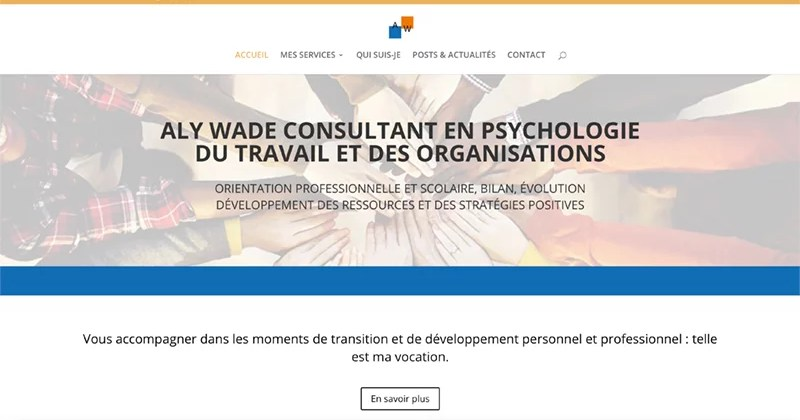 Site Internet d'Aly Wade