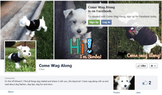 Welcome to ComeWagAlong.com!
