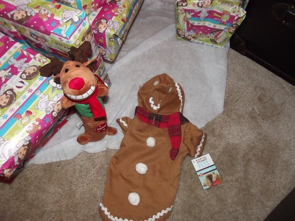 Holiday Gift Guide: PetSmart's Holiday Line Review and Giveaway