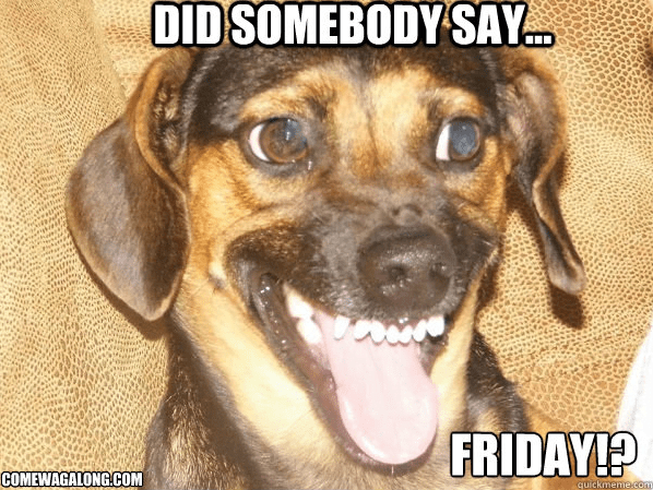 TGIF - Did Somebody Say Friday - ComeWagAlong - Dog Meme