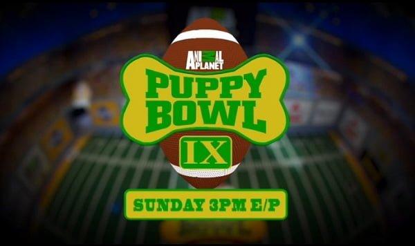 Animal Planet's Puppy Bowl IX