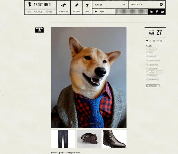 Fashion Friday: Menswear Dog is a Dapper Doggie