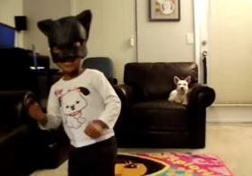 Dog Harlem Shake Video