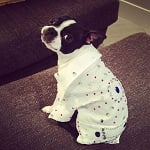 Fashion Friday: LuLu Bean's Adorable Style
