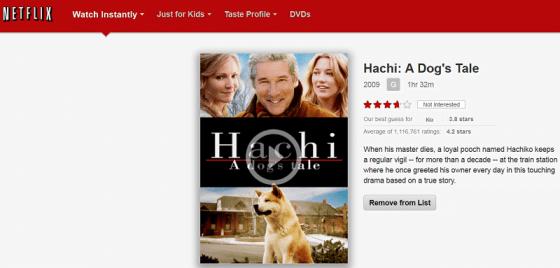 Hachi - A Dog's Tale - Movie - Netflix