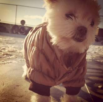 When it's really cold I wear my puff coat to keep me warm!