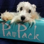 #PawPack Review + Coupon Code for 1st PawPack Purchase!