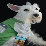 Let's Celebrate National Dress Up Your Pet Day! Happy #DressUpYourPetDay!