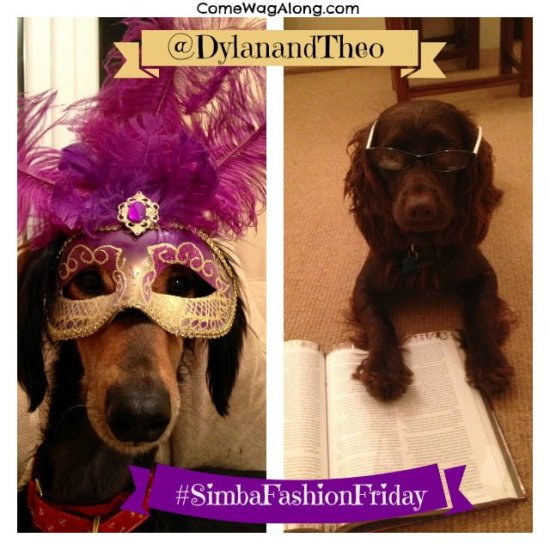 Dylan & Theo featured for Simba #FashionFriday at ComeWagAlong.com! Wanna be featured? Tag your pet photos on Instagram with #SimbaFashionFriday!