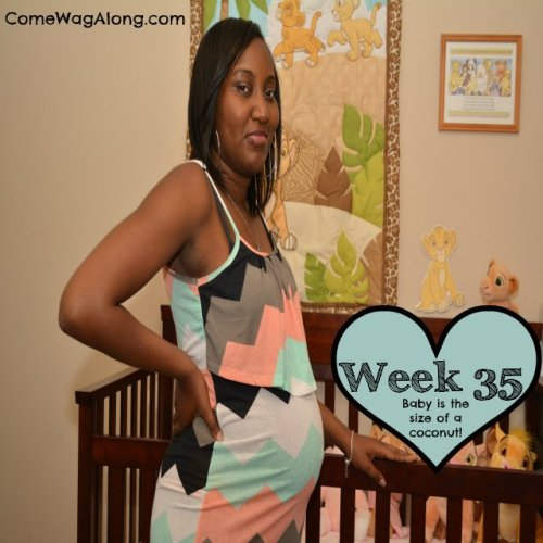 Baby Bump Week 35